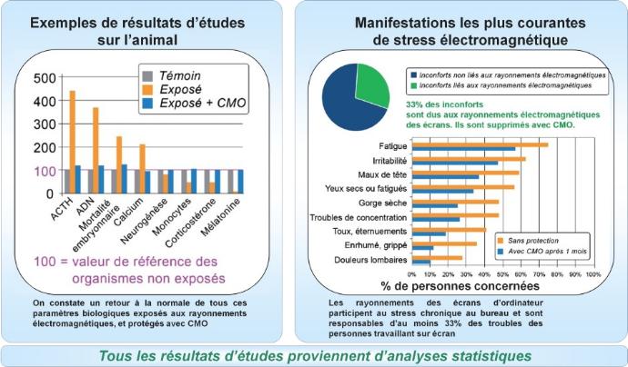 CMO-Les-etudes-graph1