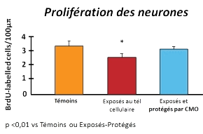 CMO-Les-etudes-graph8