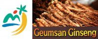 Logo-Geumsan-Ginseng