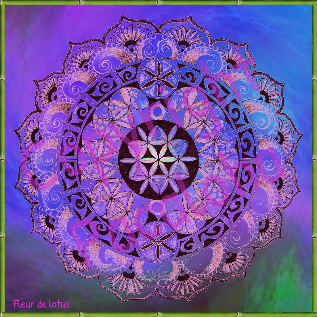 Cartes Symbole Fleur De Lotus