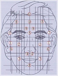 Reflexologie-facial-illustration-1