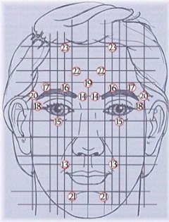Reflexologie-facial-illustration-2