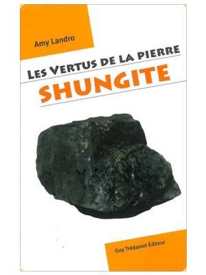 Les Vertus de la pierre Shungite - Amy Landro