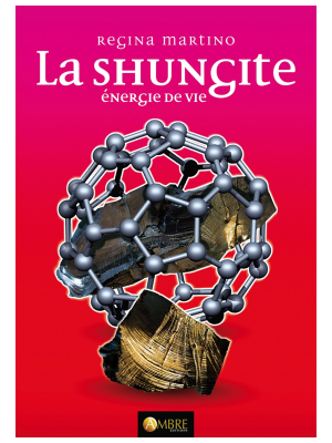 La Shungite - Énergie de Vie - Regina Martino
