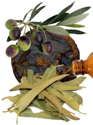 Savon noir à l'eucalyptus - illustration 2