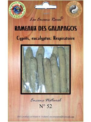 ER10-42 - Les Encens Rares - Rameaux des Galapagos
