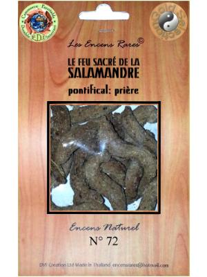 ER10-72 - Les Encens Rares - Le Feu Sacré de la Salamandre