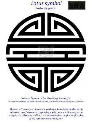 DVF-LOSY6-planche-vibratoire-Lotus-symbol