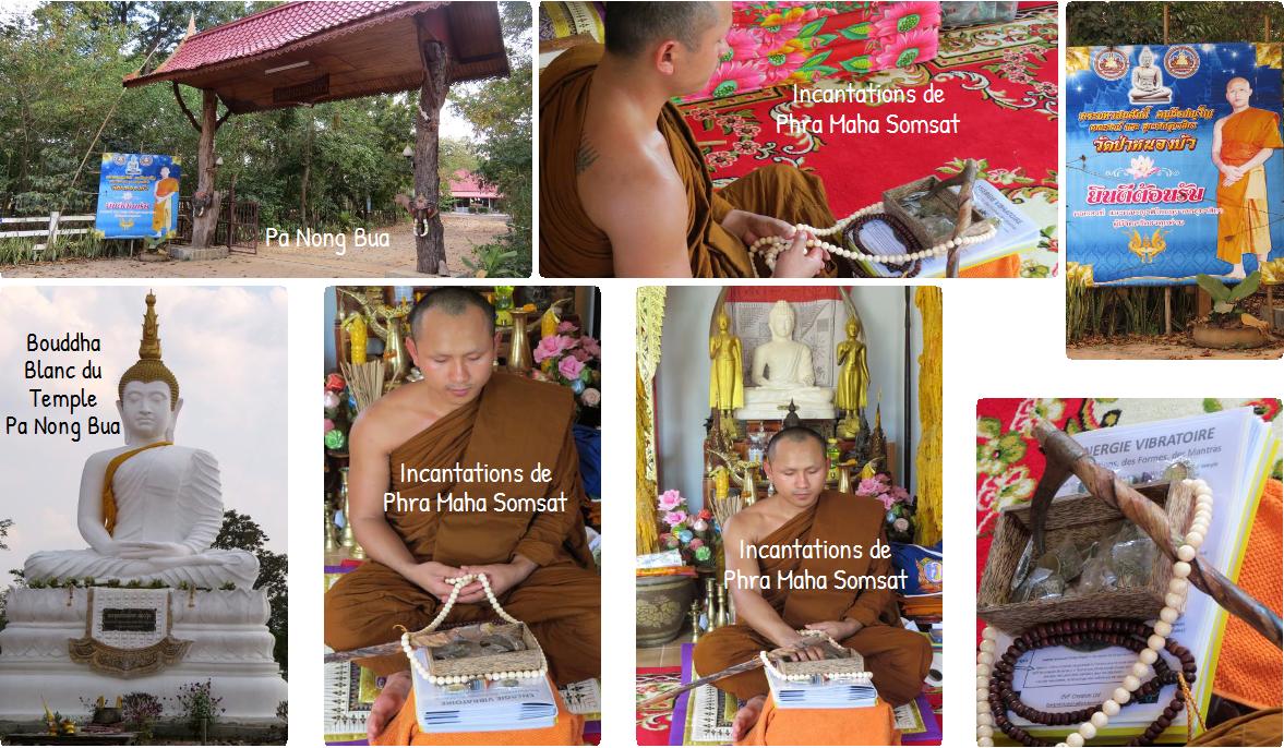 Le moine bouddhiste Phra Maha Somsat au temple de Pa Nong Bua